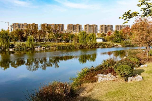 确认过眼神,邳州这两个地方的秋景已经美出了新高度!快来PICK